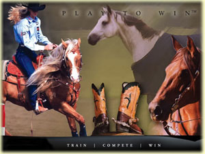 horse saddles and tack for sale
